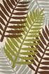 Lime, Brown (1501-22344)