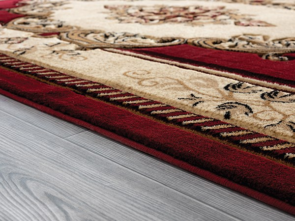 Burgundy (2050-10534) Traditional / Oriental Area Rug