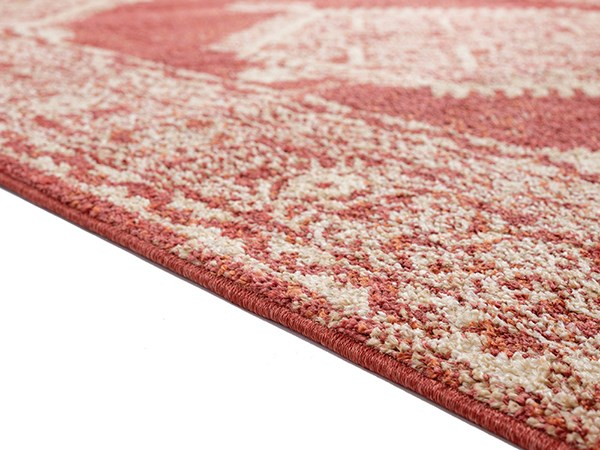 Brick (3801-30333) Traditional / Oriental Area Rug