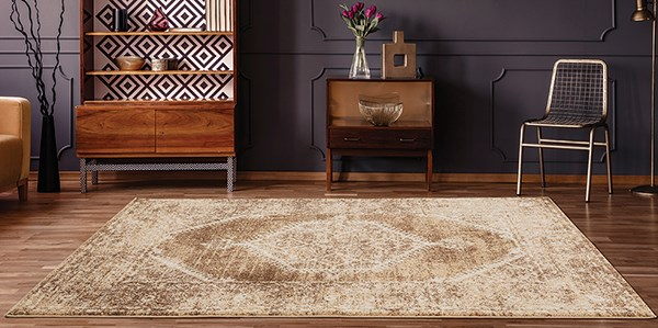Light Brown (3801-30352) Traditional / Oriental Area Rug