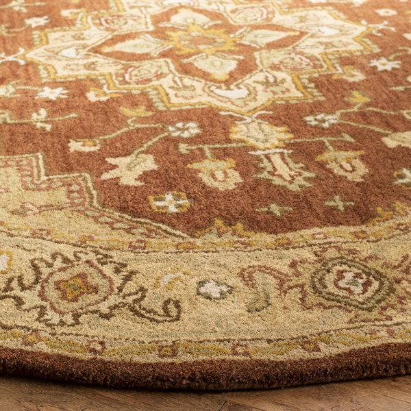 Rust, Gold (A) Traditional / Oriental Area Rug