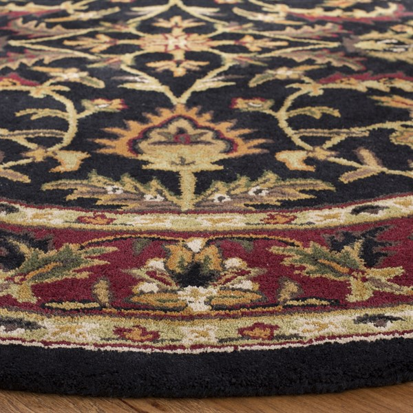 Black, Red (A) Traditional / Oriental Area Rug