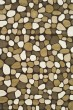 Product Image of Dark Brown (A) Transitional Area Rug