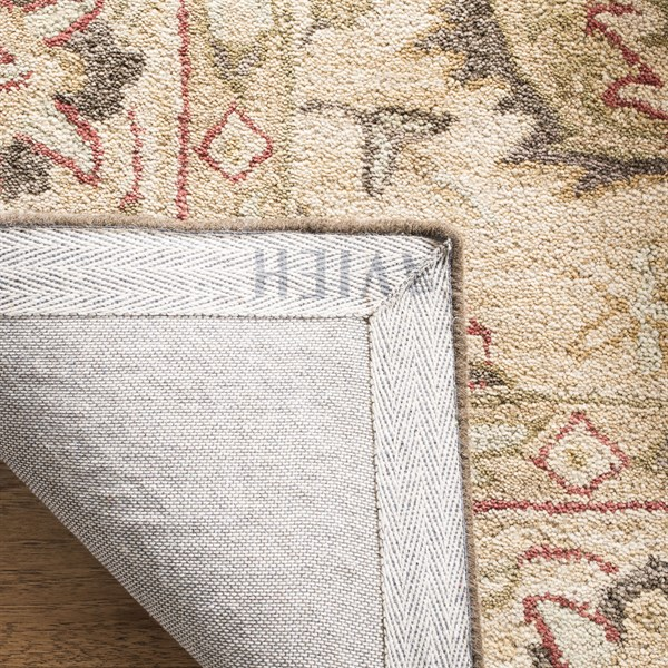 Ivory, Beige (A) Traditional / Oriental Area Rug
