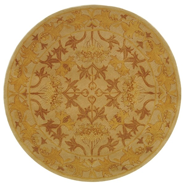 Ivory, Gold (B) Traditional / Oriental Area Rug