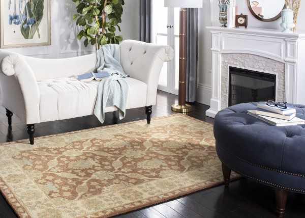 Brown, Taupe (A) Traditional / Oriental Area Rug