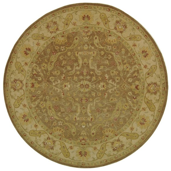 Brown, Gold (A) Traditional / Oriental Area Rug