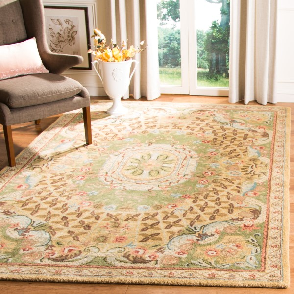 Taupe, Light Green (D) Traditional / Oriental Area Rug