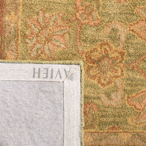 Green, Rust (A) Traditional / Oriental Area Rug