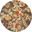 Product Image of Brown, Rust (A) Floral / Botanical Area Rug