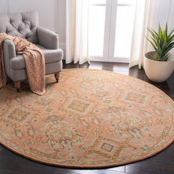 Terracotta (A) Traditional / Oriental Area Rug