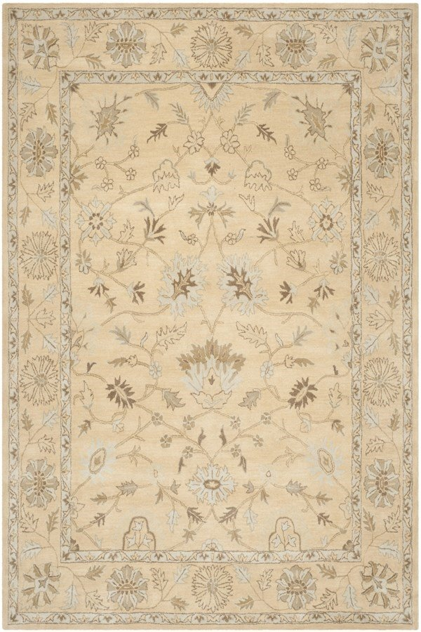 Light Gold (A) Traditional / Oriental Area Rug