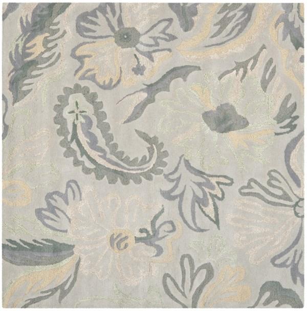 Light Grey, Beige (A) Floral / Botanical Area Rug