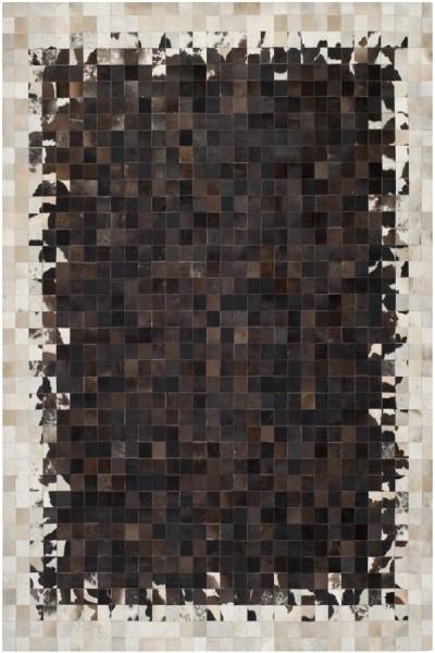 Ivory, Dark Brown (B) Contemporary / Modern Area Rug
