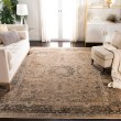 Product Image of Warm Beige (660) Traditional / Oriental Area Rug