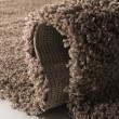 Product Image of Taupe (2424) Solid Area Rug