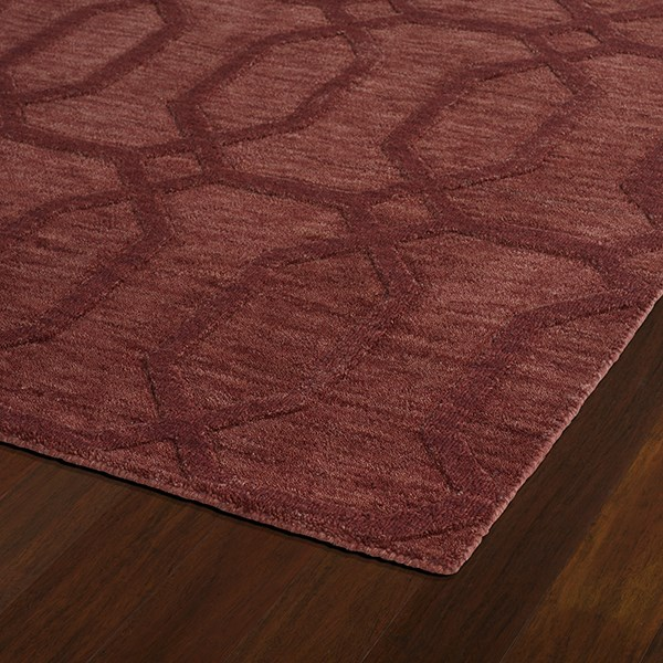Cinnamon (55) Textured Solid Area Rug