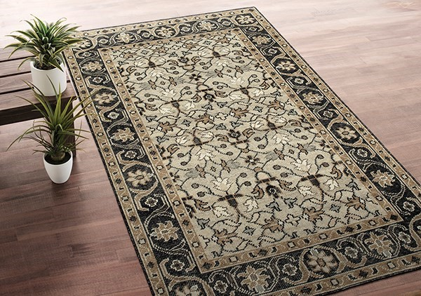 Oatmeal (84) Traditional / Oriental Area Rug