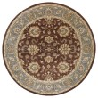 Product Image of Brown, Sky Blue, Gold (49) Traditional / Oriental Area Rug