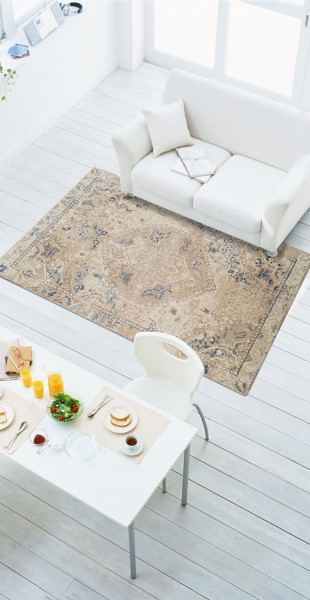 Linen Traditional / Oriental Area Rug