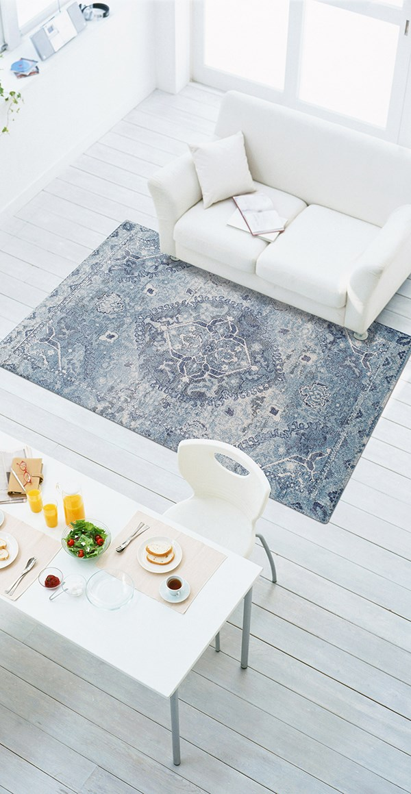 Sky Traditional / Oriental Area Rug