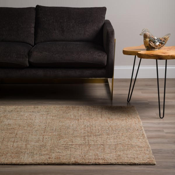 Desert Transitional Area Rug