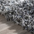 Product Image of Charcoal Shag Area Rug