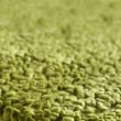 Product Image of Lime Green (6) Solid Area Rug