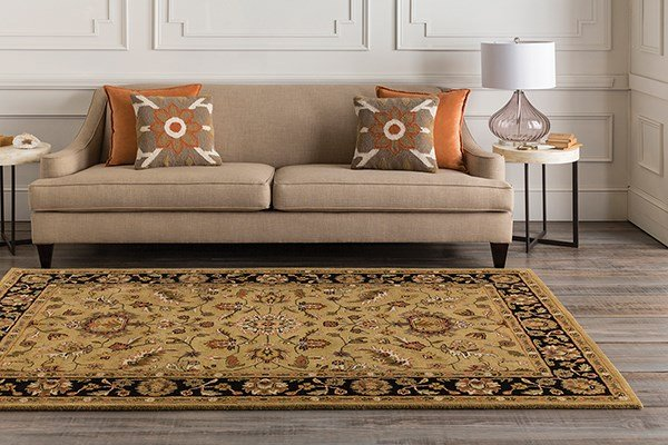 Gold, Charcoal Traditional / Oriental Area Rug