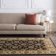 Product Image of Black, Beige Traditional / Oriental Area Rug