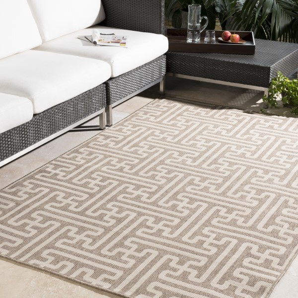 Cream, Camel Transitional Area Rug
