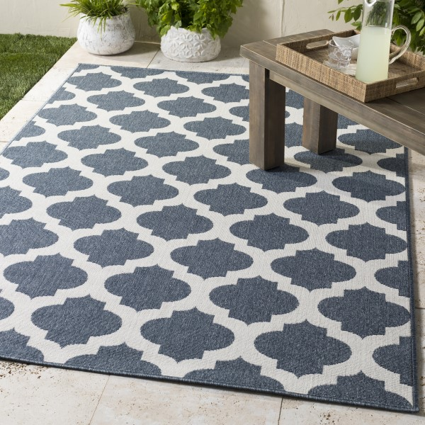 Charcoal, White Traditional / Oriental Area Rug
