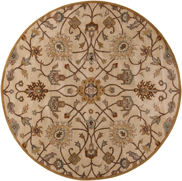 Khaki, Medium Gray, Tan, Dark Brown Traditional / Oriental Area Rug