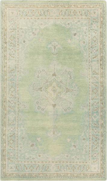 Beige, Mint, Emerald, Dark Green Traditional / Oriental Area Rug