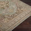 Product Image of Aqua, Brown Traditional / Oriental Area Rug