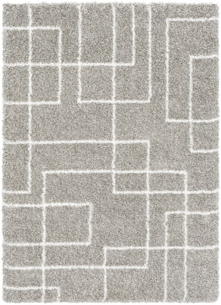 Light Gray, Taupe, White Shag Area Rug