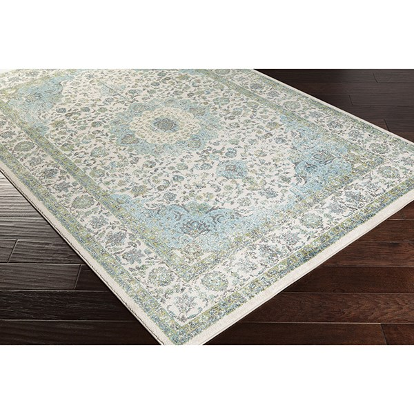 Teal, Light Gray, Ivory Traditional / Oriental Area Rug