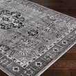 Product Image of Medium Gray, Light Gray Traditional / Oriental Area Rug