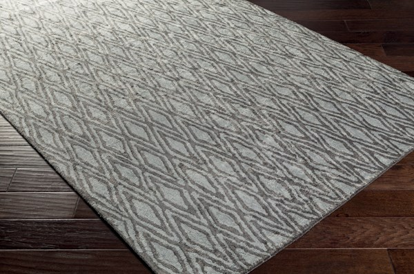 Charcoal, Pale Blue Transitional Area Rug
