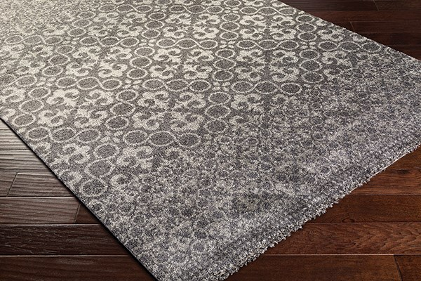 Charcoal, Light Grey Transitional Area Rug