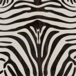 Product Image of Ivory, Black Animals / Animal Skins Area Rug