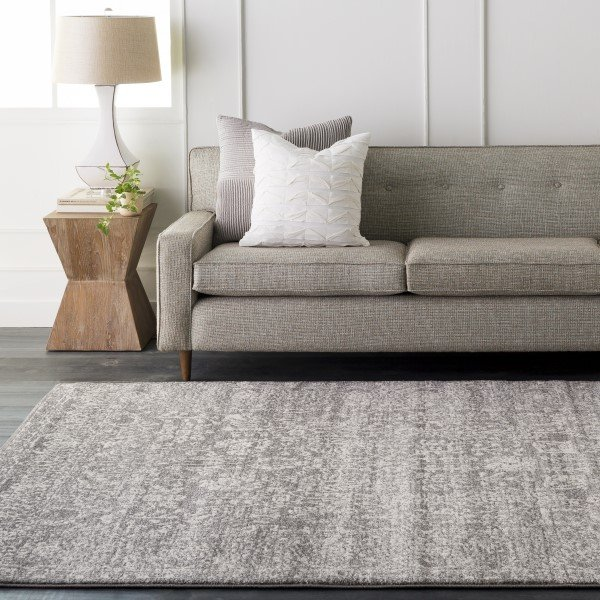 Beige, Light Gray, Black Traditional / Oriental Area Rug