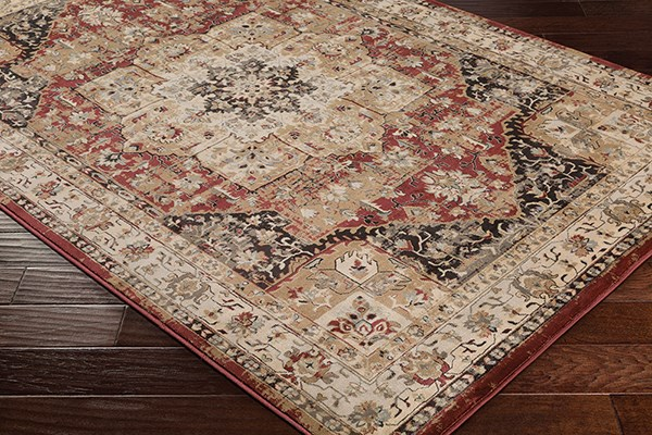 Surya Kaitlyn Traditional Vintage Rugs Rugs Direct