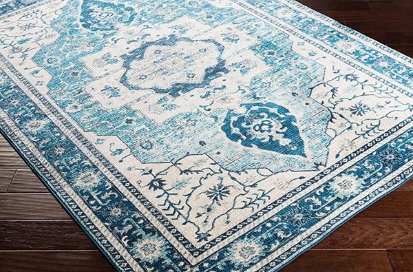Sky Blue, Bright Blue Traditional / Oriental Area Rug