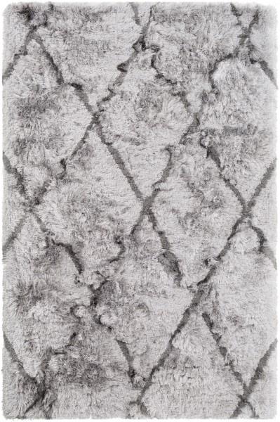 Light Grey, Charcoal (CSR-1003) Shag Area Rug