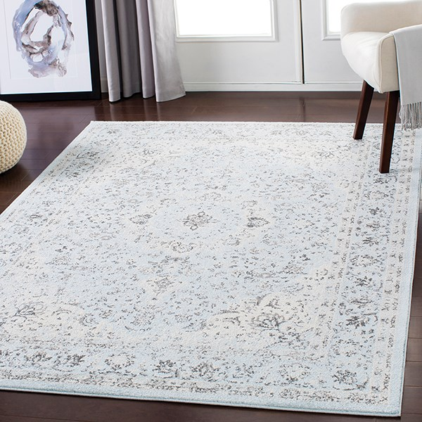Pale Blue, Medium Gray, Charcoal Traditional / Oriental Area Rug