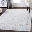 Product Image of Pale Blue, Medium Gray, Charcoal Traditional / Oriental Area Rug