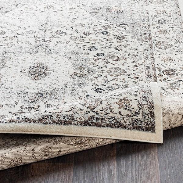 Charcoal, Medium Gray Traditional / Oriental Area Rug