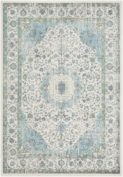 Aqua, Grass Green	 Traditional / Oriental Area Rug
