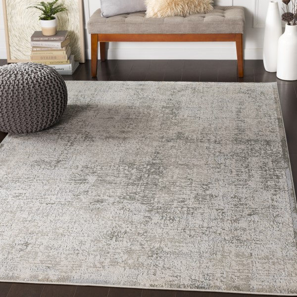 Light Grey, Grey, Cream Vintage / Overdyed Area Rug